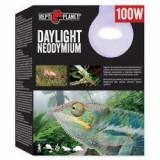 Bec REPTI PLANET Daylight Neodymium 100W