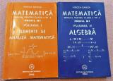 Matematica 2 Volume. Manual pentru clasa a XII-a Profil M1 - Mircea Ganga