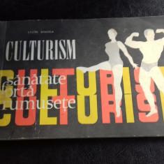 CULTURISM - LAZAR BAROGA