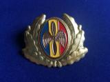 Insignă Militară- Insignă România- Cuc/Caschetă/Emblemă-Ofițer inferior- Aviație