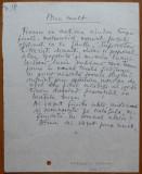 Pagina manuscris Margareta Sterian