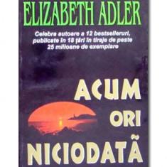 Acum ori niciodata-Elizabeth Adler(Lider)