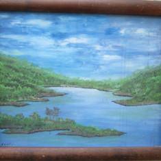 Tablou vedere spre lac semnat