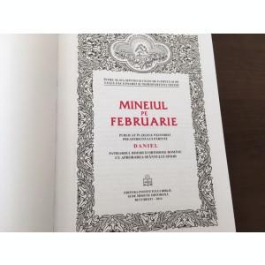 Mineiul pe Februarie