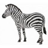 Figurina Zebra Collecta, 12.4 x 9.3 cm, 3 ani+