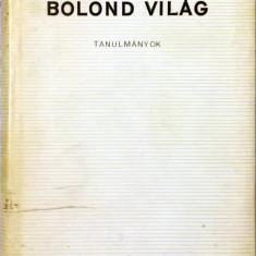 Benedek István - Bolond világ : tanulmányok - 1038 (carte pe limba maghiara)