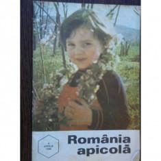 REVISTA ROMANIA APICOLA NR.4/1996