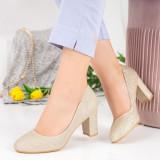 Pantofi cu toc dama aurii MDL00369