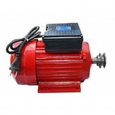 Motor electric monofazat Troian Micul Fermier, 2.2 kW, 3000 rpm, 9.6 A