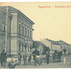 4618 - CAREI, Satu Mare, Market, Romania - old postcard - unused, Circulata, Printata