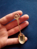 Lingurita argint