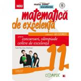 Mate excelenta pentru clasa a XI-a. Algebra - Vasile Pop Coord., Dana Heuberger