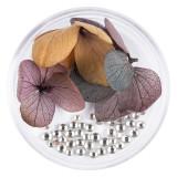 Cumpara ieftin Flori Uscate Unghii LUXORISE cu cristale - Floral Fairytale #06
