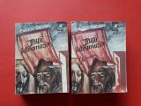 FRATII KARAMAZOV × DOSTOIEVSKI 2 volume