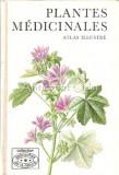 Plantes Medicinales - Frantisek Stary, Vaclav Firasek