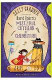 Aripi si Co. Vol.4: Misterul cutiilor de chibrituri - Sally Gardner, David Roberts