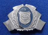 Insigna Militara Ofiter POLITIE - Coifura insemn cascheta - Cuc Politia