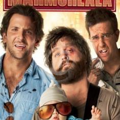 Marea mahmureala (DVD)