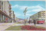 Bnk cp Baia Mare - Vedere - uzata, Circulata, Printata