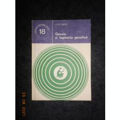 PETRE RAICU - GENELE SI INGINERIA GENETICA