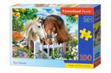 Puzzle Best Friends, 100 piese, castorland