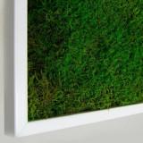 Cumpara ieftin Tablou vegetal ARTFLORA Premium FlatMoss 30x100cm