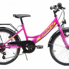 Bicicleta Copii Kreativ 2014 Violet 20