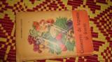 conserve de legume si fructe 217pagini ecaterina teisanu