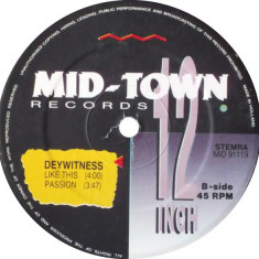 Dyewitness aka DJ Misjah - Observing The Earth (Vinyl), VINIL