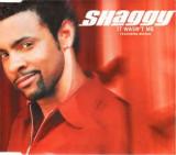 CD Shaggy Featuring Rikrok – It Wasn't Me, original