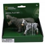 Set 2 figurine Hipopotam si Zebra