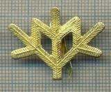 Y 1797 INSIGNA - MILITARA -SEMN DE ARMA -VANATORI DE MUNTE  -PENTRU COLECTIONARI