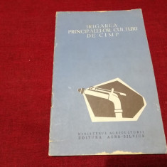 IRIGAREA PRINCIPALELOR CULTURI DE CAMP