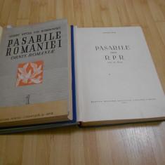 R. R. DOMBROWSKI - DIONISIE LINTIA--PASARILE ROMANIEI - VOL. I + III