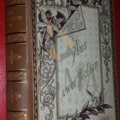 DITO und IDEM ( CARMEN SYLVA si Mite KREMNITZ ) - AUS ZWEI WELTEN - Roman ( coperta deosebita! ), Bonn 1884, Princeps !!!