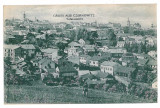 1391 - CERNAUTI, Bucovina, Panorama Synagogue - old postcard - unused