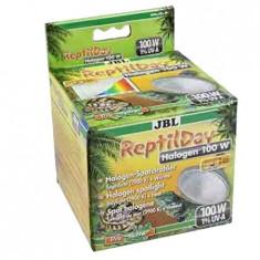 JBL ReptilDay Halogen 100W, 6184400, bec terariu