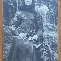 Foto pe carton gros , Bacau , inceput de secol 20