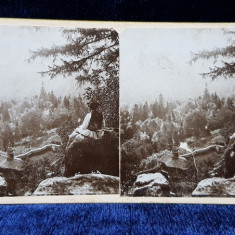 SCHITUL SIHLA , JUDETUL NEAMT , VEDERE DE PE STANCI , FOTOGRAFIE STEREOSCOPICA , MONOCROMA, PE SUPORT DE CARTON , CCA. 1900