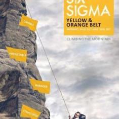 Lean Six SIGMA Yellow & Orange Belt: Mindset, Skill Set and Tool Set