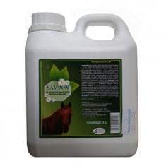 Sampon cu extracte din plante pentru cabaline, Pasteur, set 1L + 1L