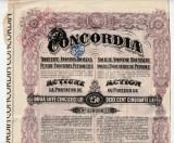 Actiuni Concordia 250 lei 1924 + 3 cupoane ptr. dividende anuale_serie 1302003