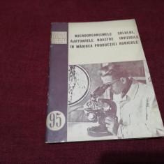MICROORGANISMELE SOLULUI AJUTOARELE NOSTRE INVIZIBILE IN MARIREA PRODUCTIEI 1954
