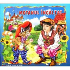 Motanul incaltat - Carte ilustrata(ed.Stefan)