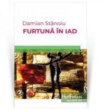 Furtuna in iad   Damian Stanoiu