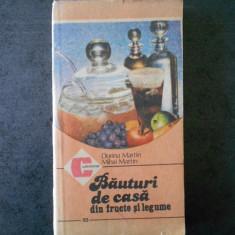 DORINA MARTIN - BAUTURI DE CASA DIN FRUCTE SI LEGUME