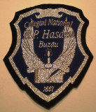 5.503 ROMANIA ECUSON COLEGIUL NATIONAL B.P. HASDEU BUZAU 90/78mm
