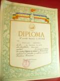 Diploma Cantarea Romaniei Premiul I Pictura Etapa de Masa