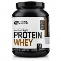 ON Protein Whey 1.7 kg