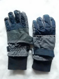 Manusi ski dame Alive Thinsulate TM Insulation 40 gram, captusite cu piele; S